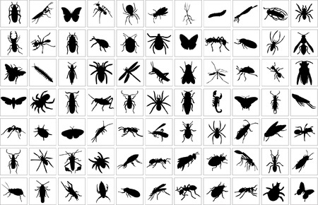 10254610 - collection of bugs